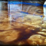 Acid Stained Decorative Concrete Floor