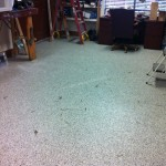Epoxy Chip Floor