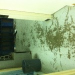 Before - Failing Epoxy Flooring